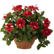 Artificial Hibiscus Clay Planter Silk Floral Arrangement