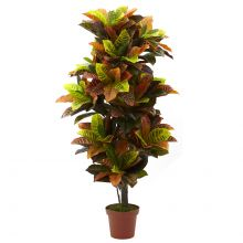 Artificial Croton Real Touch